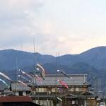 【写真】屋根よーりー高い、こいのーぼーりー!