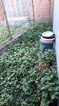 【写真】自宅物置裏草刈り