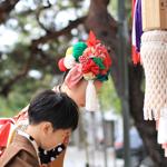 【写真】七五三詣り