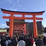【写真】2020年新春!伏見稲荷大社!